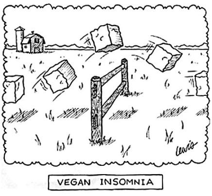 vegan_insomnia.sized